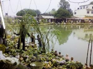 Chhat_20141029095834